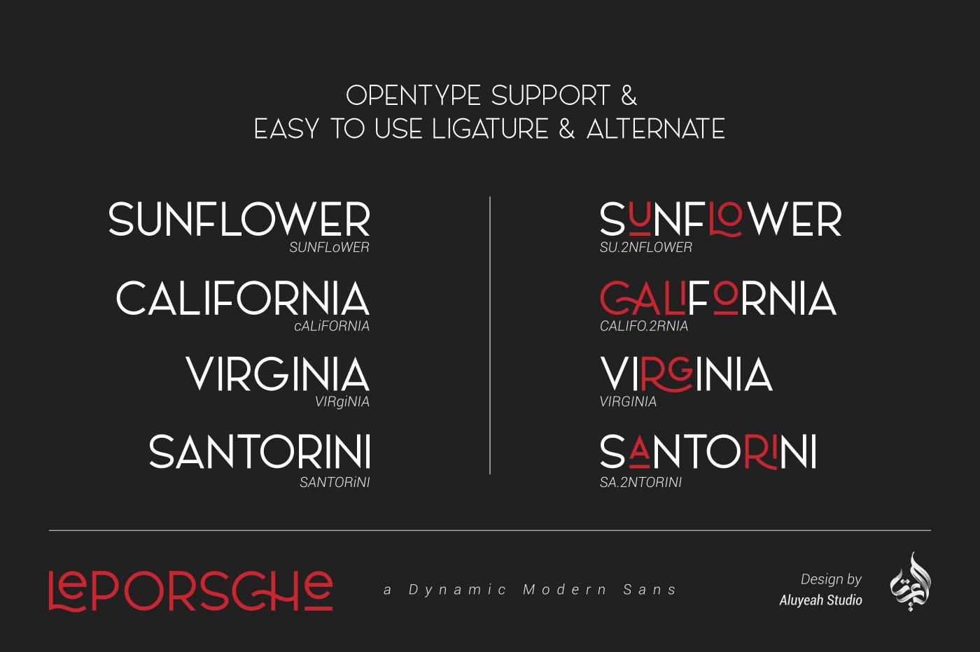 LePORSCHE dynamic modern font