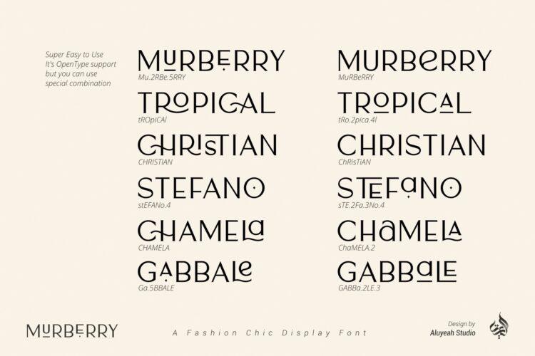 Murberry Fashion Font