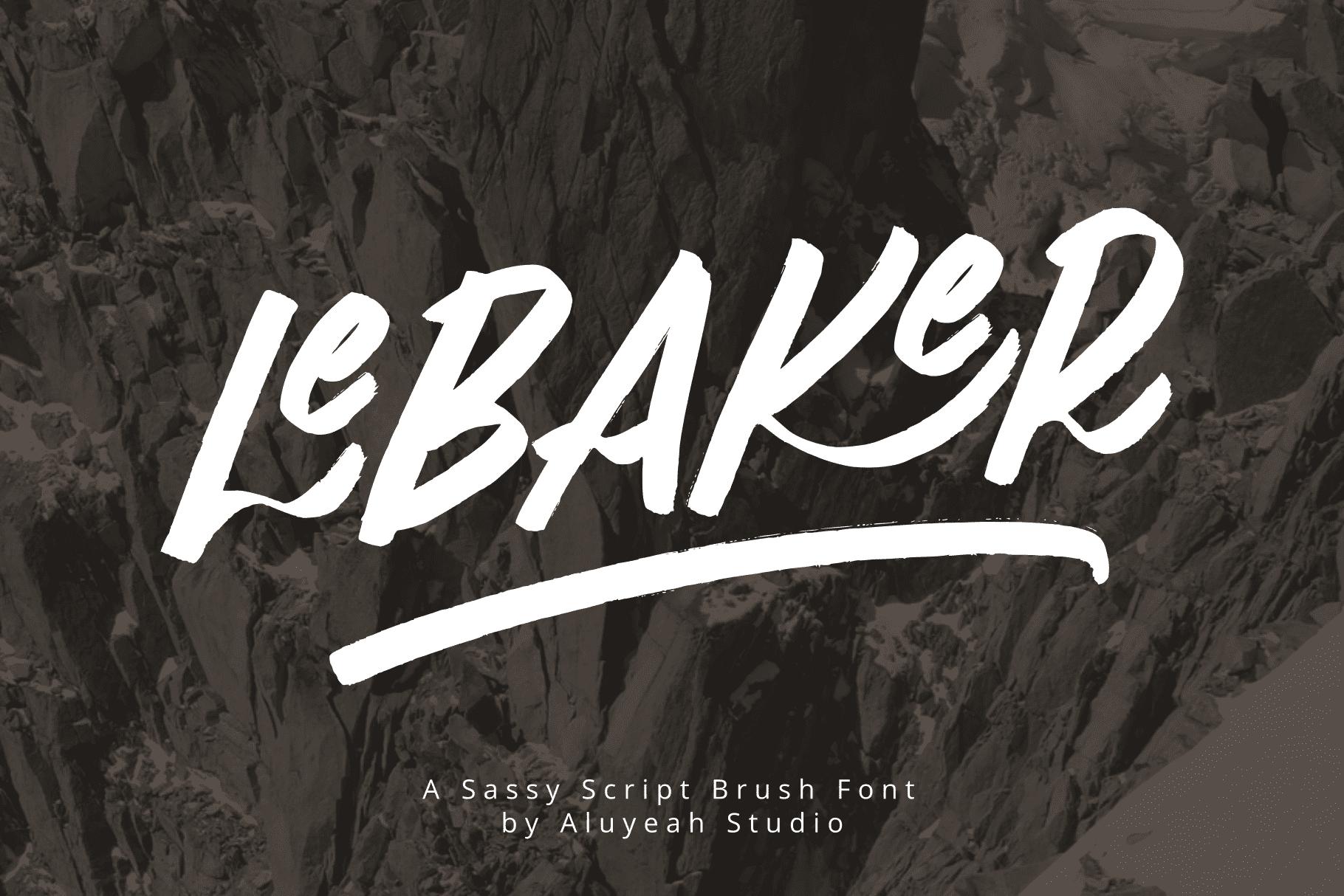 LeBaker Preview